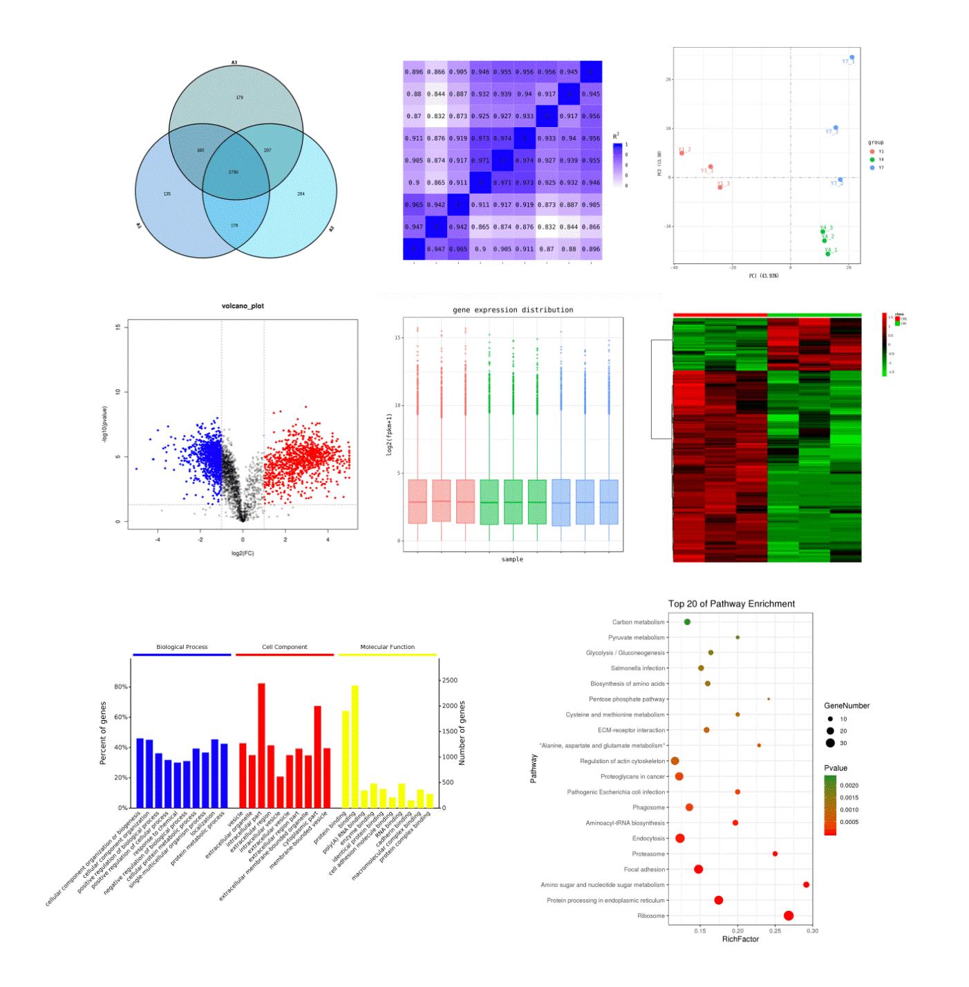 百泰派克生物科技转录组测序案例展示